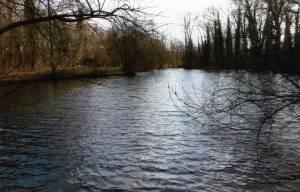Ella's Lake