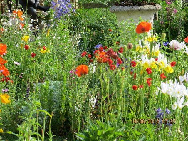 Cottage garden 1.