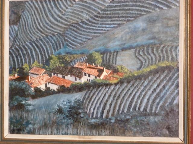 Vin yards France