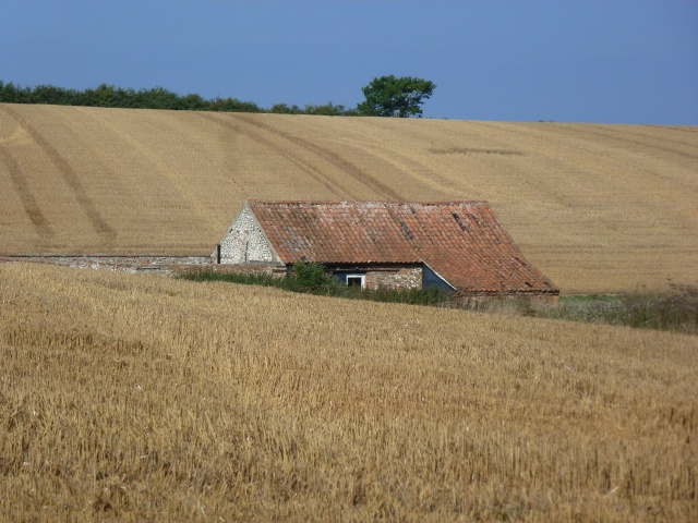 stubble Hall field
